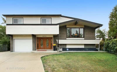 Niles Single Family Home For Sale: 9753 Huber Oval