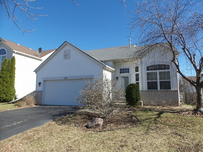 Romeoville Single Family Home For Sale: 299 East Daisy Circle