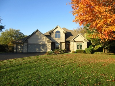 Lockport Single Family Home For Sale: 16037 Aberdeen Drive