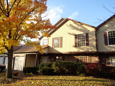Naperville IL Condo/Townhouse For Sale: $155,000