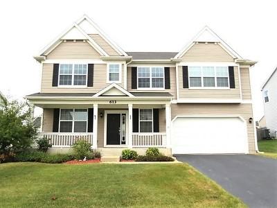 Oswego Single Family Home Contingent: 613 Pimlico Street