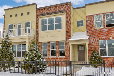 Aurora Condo/Townhouse For Sale: 956 Station Boulevard