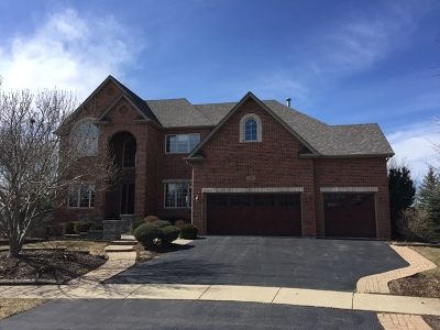 Plainfield Single Family Home For Sale: 12812 Scoter Court