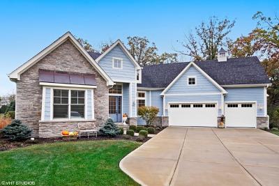 Burr Ridge Single Family Home For Sale: 15w760 89th Street