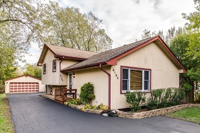 Downers Grove Single Family Home For Sale: 6165 Woodward Avenue