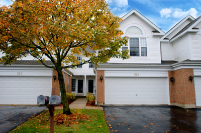 Du Page County Condo/Townhouse Re-Activated: 523 Citadel Circle