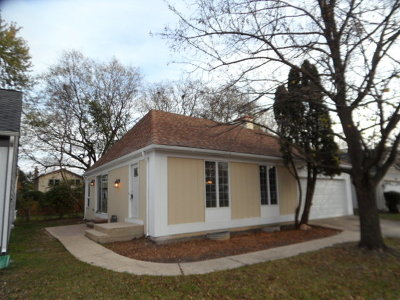 Lisle Single Family Home For Sale: 6607 Fernwood Drive