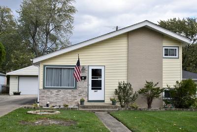 Villa Park Single Family Home For Sale: 347 North Lincoln Avenue