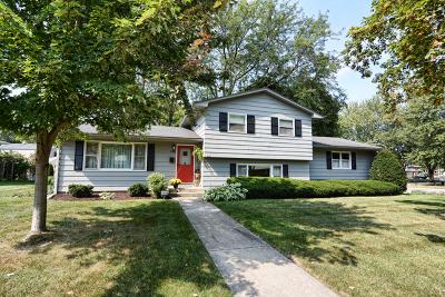 Elgin Single Family Home Contingent: 136 Kathleen Drive