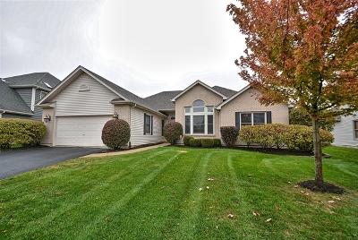 Aurora Single Family Home Price Change: 2800 Castlewood Court