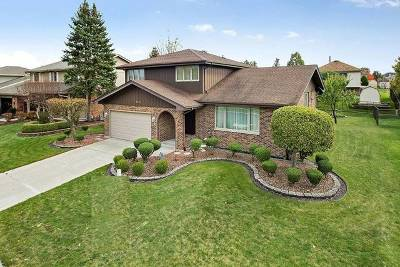 Orland Park Single Family Home For Sale: 9101 Wheeler Drive