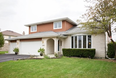 Mokena Single Family Home For Sale: 9960 Derby Lane