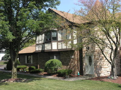 Palos Park Condo/Townhouse For Sale: 11517 Edelweiss Drive
