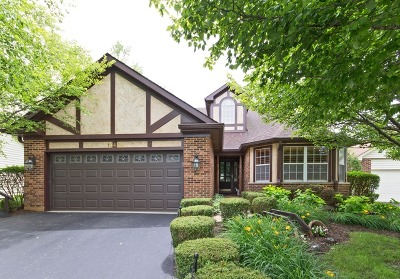 Plainfield Single Family Home For Sale: 13490 Redberry Circle