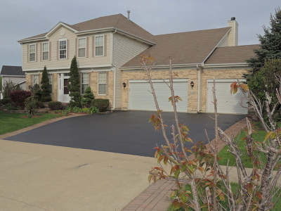 Hoffman Estates Single Family Home For Sale: 5355 Shotkoski Drive