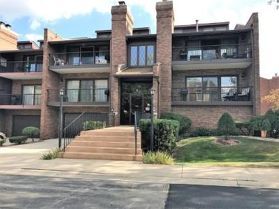 Palos Heights, Palos Hills Condo/Townhouse For Sale: 4 Cinnamon Creek Drive #4-3N