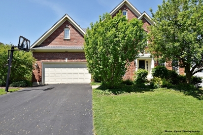 Batavia Single Family Home For Sale: 927 Lund Lane