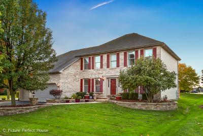 High Meadow Single Family Home Price Change: 2163 Yellowstar Lane