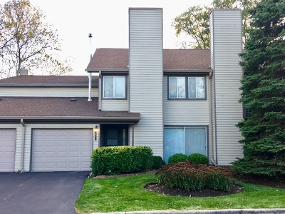 Downers Grove Condo/Townhouse Contingent: 1827 Breasted Avenue #74