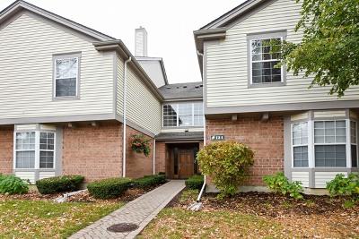 Schaumburg Condo/Townhouse For Sale: 124 White Oak Court #4