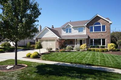 New Lenox Single Family Home For Sale: 681 Wellington Parkway