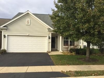 Huntley Single Family Home Contingent: 13956 Starved Rock Place