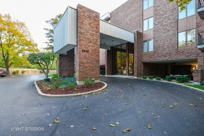 Downers Grove Condo/Townhouse Contingent: 6545 Main Street #201