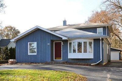 Palatine Single Family Home For Sale: 310 North Schiller Street