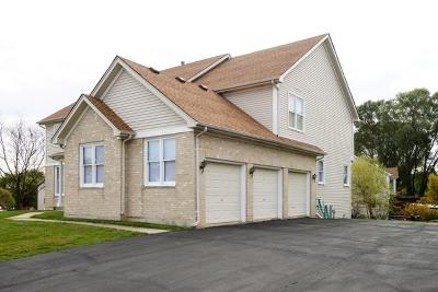 Hoffman Estates Single Family Home For Sale: 5525 Mallard Lane