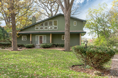 Lisle Single Family Home For Sale: 5242 Riverview Drive