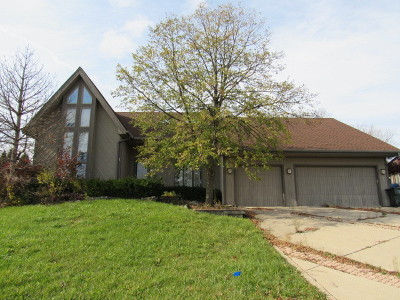 Homer Glen Single Family Home Contingent: 13632 South Potawatomi Trail