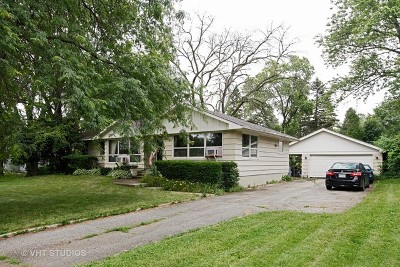 Lisle Single Family Home Contingent: 641 Riedy Road