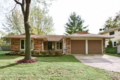 Bolingbrook Single Family Home For Sale: 521 West Briarcliff Road