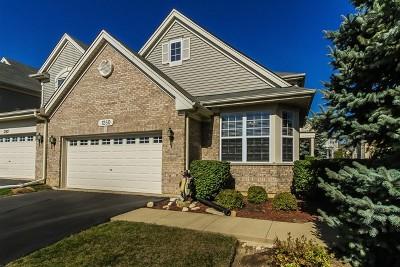 Bartlett IL Condo/Townhouse For Sale: $285,000