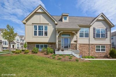 Carol Stream Condo/Townhouse For Sale: 321 Bennett Drive