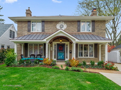 Western Springs Single Family Home For Sale: 3905 Franklin Avenue
