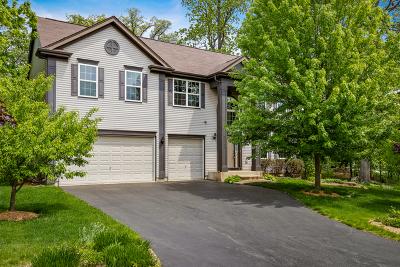 Hoffman Estates Single Family Home Contingent: 5644 Red Oak Drive