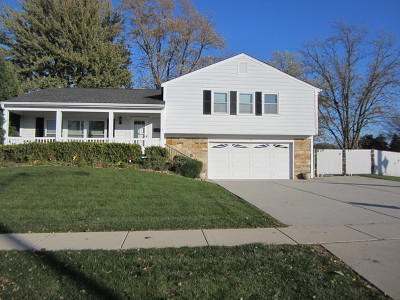 Schaumburg Single Family Home Contingent: 1 North Braintree Drive