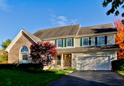 Vernon Hills Single Family Home For Sale: 217 Brook Hill Lane