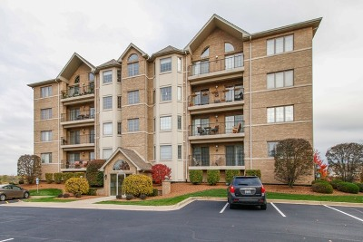 Homer Glen Condo/Townhouse For Sale: 14100 Sheffield Drive #304