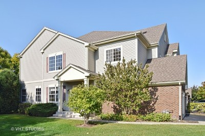 Hoffman Estates Condo/Townhouse For Sale: 6095 Delaney Drive #21-1