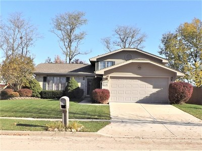 Romeoville Single Family Home For Sale: 291 Georgetown Avenue