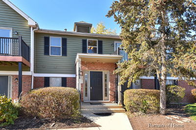 Naperville Condo/Townhouse Contingent: 1561 Raymond Drive #201