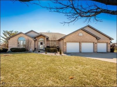 Homer Glen Single Family Home For Sale: 14717 Stonehaven Lane