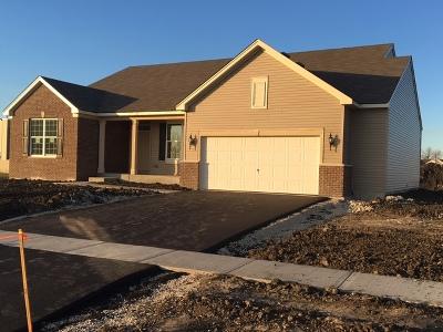 Joliet Single Family Home Price Change: 8515 Buckingham Road