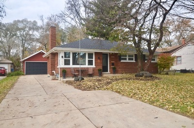 Naperville Single Family Home New: 1219 North Eagle Street