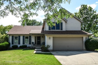 Lake Zurich Single Family Home For Sale: 320 Stone Avenue