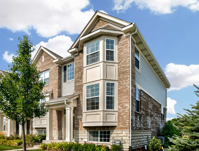Naperville Condo/Townhouse For Sale: 2867 Henley Lane