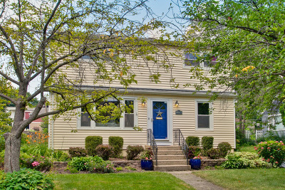 Libertyville Single Family Home For Sale: 423 Windsor Terrace