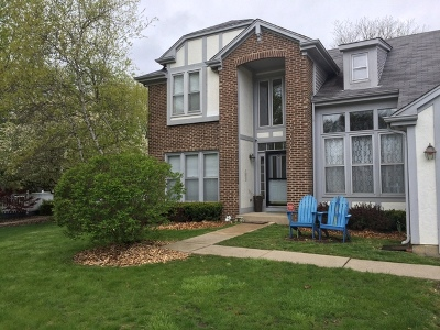 Vernon Hills Single Family Home For Sale: 68 Shelby Court